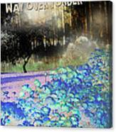 Way Over Yonder Canvas Print