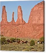 Wayne Monument Canvas Print