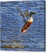We Have Liftoff Canvas Print