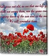 We Will Remember Them... Canvas Print
