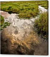 Weather Reflected Canvas Print