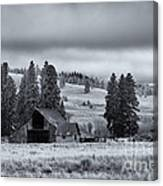 Weathered Beneath The Storm Canvas Print