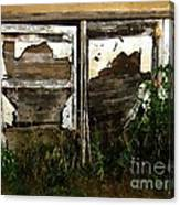 Weathered In Weeds Canvas Print