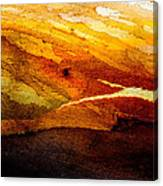 Weathered Wood Landscape Canvas Print