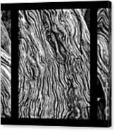 Weathered Wood Triptych Bw Canvas Print