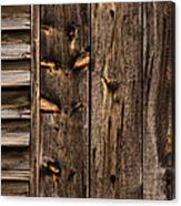Weathered Wooden Abstracts - 3 Canvas Print