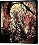 Web Of Tree Mauve Canvas Print