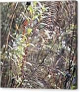Web We Weave Canvas Print