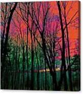 Webbs Woods Sunset Canvas Print