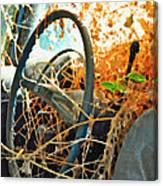 Weedy Steering Canvas Print