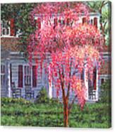 Weeping Cherry By The Veranda Canvas Print