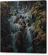 Weeping Rocks Canvas Print
