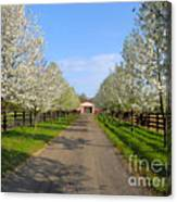 Welcome To The Farm Canvas Print
