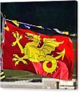 Wessex Wyvern Flag Canvas Print