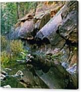 West Branch Oak Creek Canvas Print