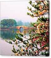 West Lake Blossums Canvas Print