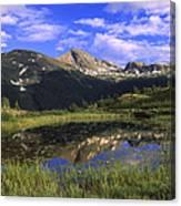 West Needle Mountains Weminuche Canvas Print