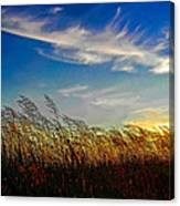 West Wind Canvas Print