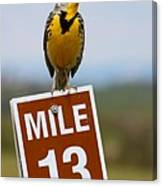Western Meadowlark On The Mile 13 Sign Canvas Print