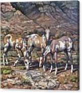 Western Treasures Nursery Rhymes Canvas Print