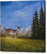 Western Whitetail Canvas Print