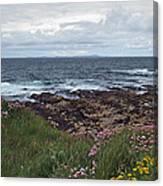Westray Firth Canvas Print