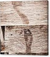 Wet Feet Prints Canvas Print