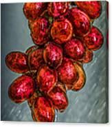 Wet Grapes Four Canvas Print