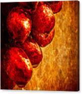 Wet Grapes Three Canvas Print