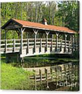 Wetland Footbridge Canvas Print