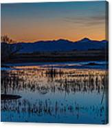 Wetland Twilight Canvas Print