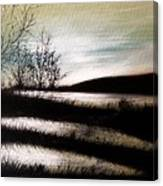 Wetland Visit Canvas Print