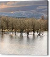 Wetlands At Columbia River Gorge Canvas Print