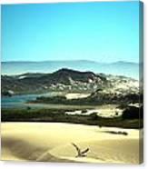 Wetlands In The Dunes Canvas Print
