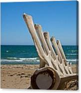 Whale Bones On The Beach Canvas Print