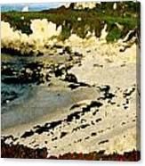 Whale Rock Beach Canvas Print