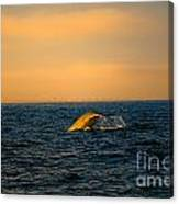 Whale Tail In The Sun Canvas Print