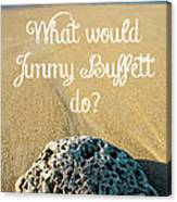 What Would Jimmy Buffett Do Canvas Print
