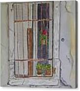 What's Behind The Window Canvas Print