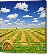 Wheat Farm Field And Hay Bales At Harvest In Saskatchewan Canvas Print