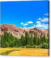 Wheat Farming At Basgo Ladakh Canvas Print