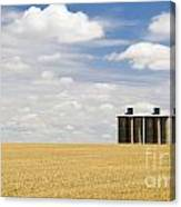 Wheat Fields Canvas Print