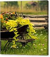 Wheel Barrow Of Flowers Canvas Print