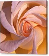 Wheel Rose   Canvas Print