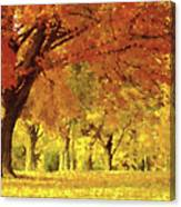 When Autumn Leaves Fall Canvas Print