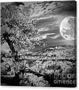 When The Moon Comes Over Da Mountain Canvas Print