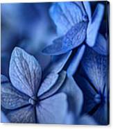 When You're Feeling Blue Canvas Print