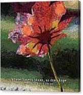 Where Flowers Bloom 04 Canvas Print