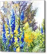 Where The Delphinium Blooms Canvas Print