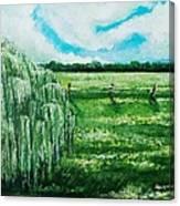 Where The Green Grass Grows Canvas Print